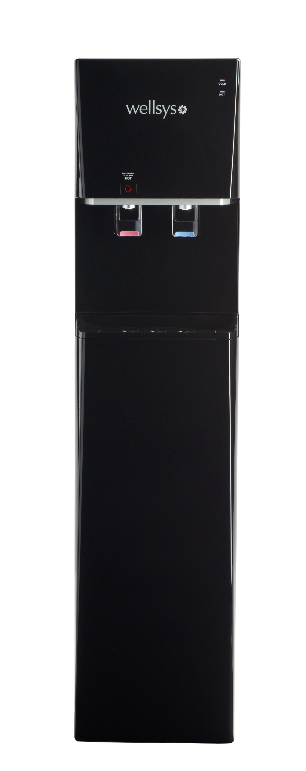 WS5000 Bottleless Water Cooler from EcoWater of Atlanta